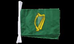Fahnenkette Irland Leinster - 30 x 45 cm