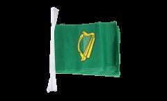 Fahnenkette Irland Leinster - 15 x 22 cm