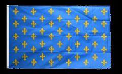 Flagge Frankreich Lilienwappen, blau - 90 x 150 cm
