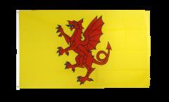 Flagge Großbritannien Somerset neu