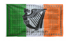 Flagge Irland Ireland Soldiers - 90 x 150 cm