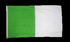 Flagge Irland Limerick
