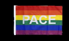 Flagge Regenbogen mit PACE - 30 x 45 cm